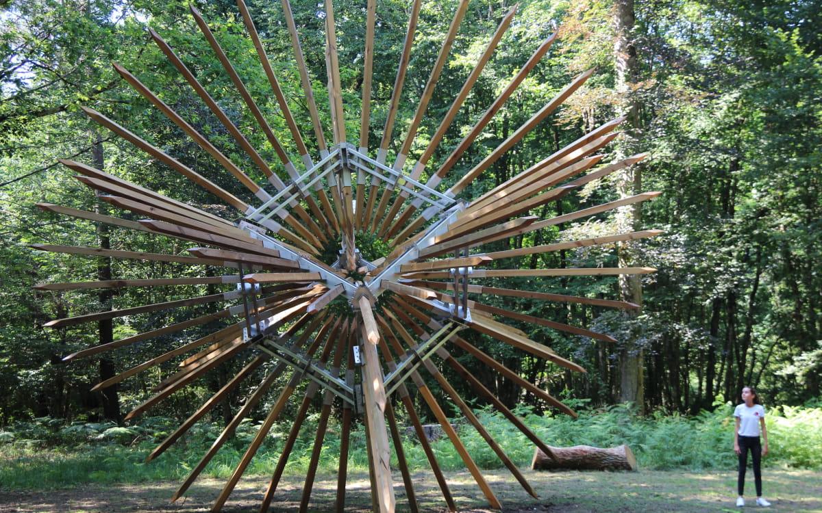 La Forêt des Sens