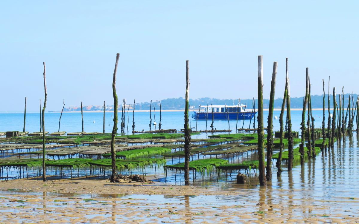 Port de l'Herbe sur le Bassin d'Arcachon