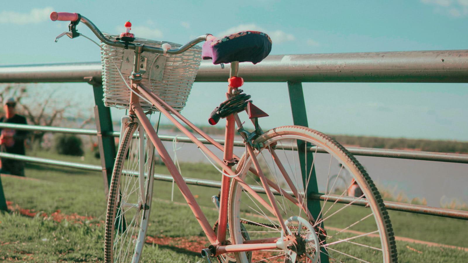 Location de vélo pour de belles promenades