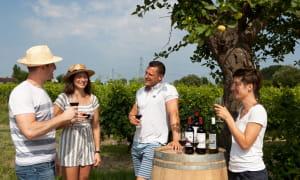 visiter-chateau-bordeaux-deguster-vin-32