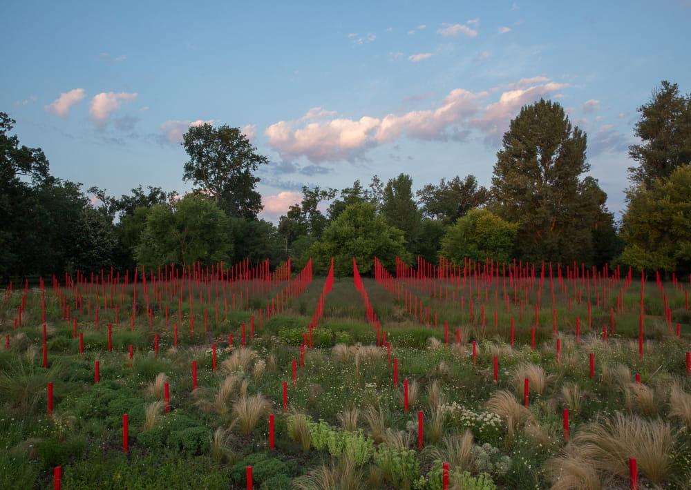 Jardin-Millesime----Credit-photo-Yann-Monel-3