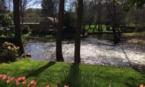 le-pavillon-du-lac