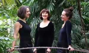 concert Trio anima