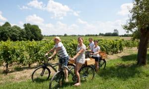 vélo et dégustations - BARDINS (Ateliers au chateau)
