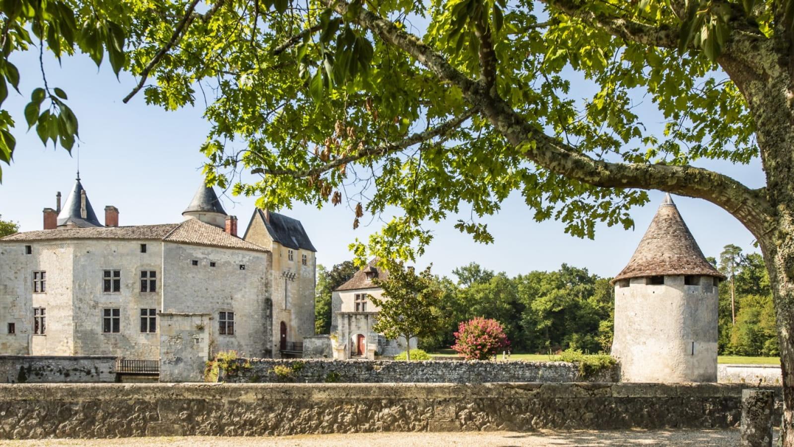 Vue ext ®ANAKA-Château de La Brède