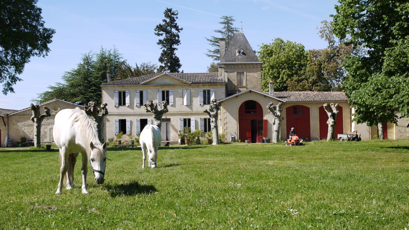 chateau_lusseau_P1090784